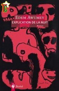 Roman: Critique littéraire : Explication de la nuit d'Edem Awumey par Laurence Charlotte Vinet