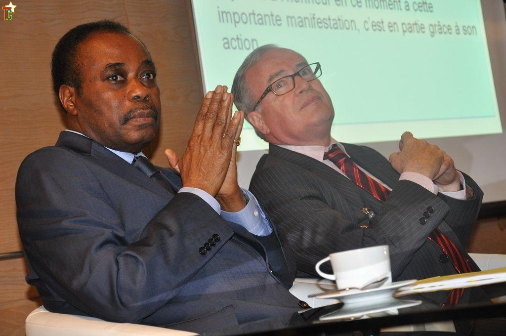 Togo- France:Edem Kodjo, président du 22e FIG : « L'Afrique possède une illusion de puissance »