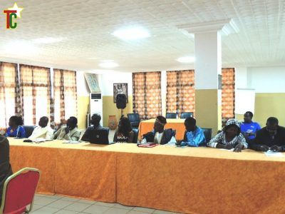 Renforcement de capacité des coalitions pour la diversité culturelle en Afrique francophone